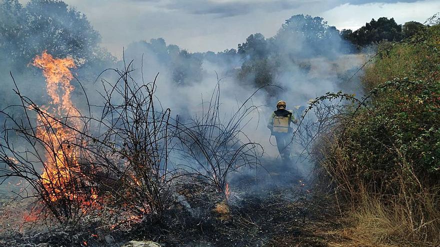 Sofocados dos incendios en los términos municipales de Moral de Sayago y Formariz