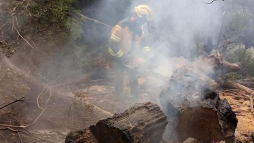 Un rayo provoca un incendio forestal en Pollença