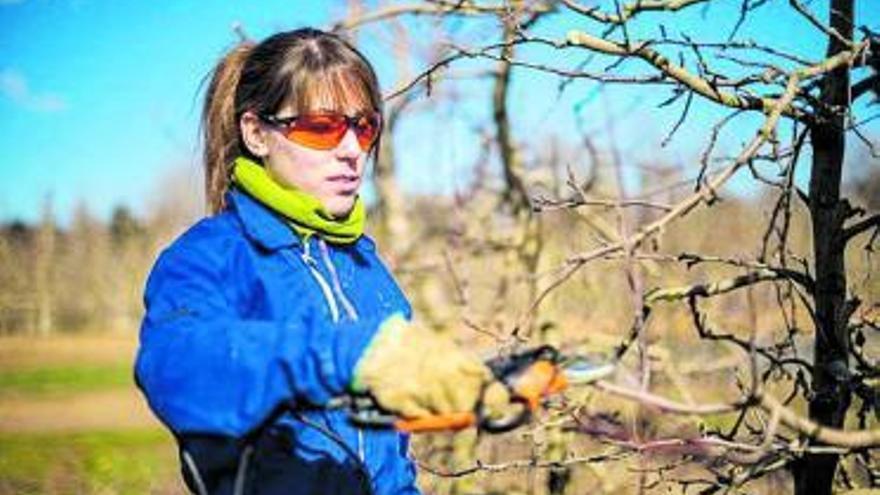 El 40% dels treballadors del sector agroalimentari són dones