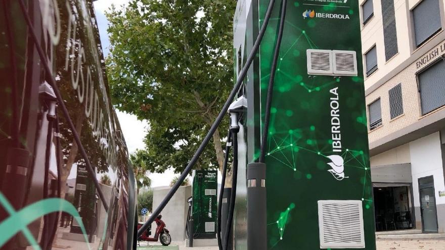 Iberdrola contrata a una empresa de Torrevieja para su plan de movilidad sostenible