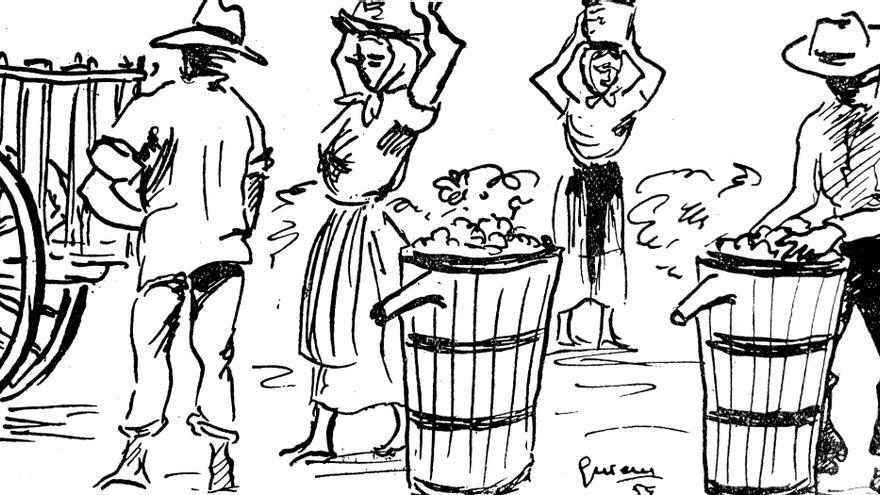 Ilustración que representa a mujeres y hombres en plena tarea de vendimia.