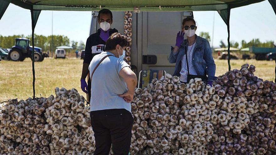 Las ventas de ajo en Ifeza sirven para recuperar el 40% de la Feria