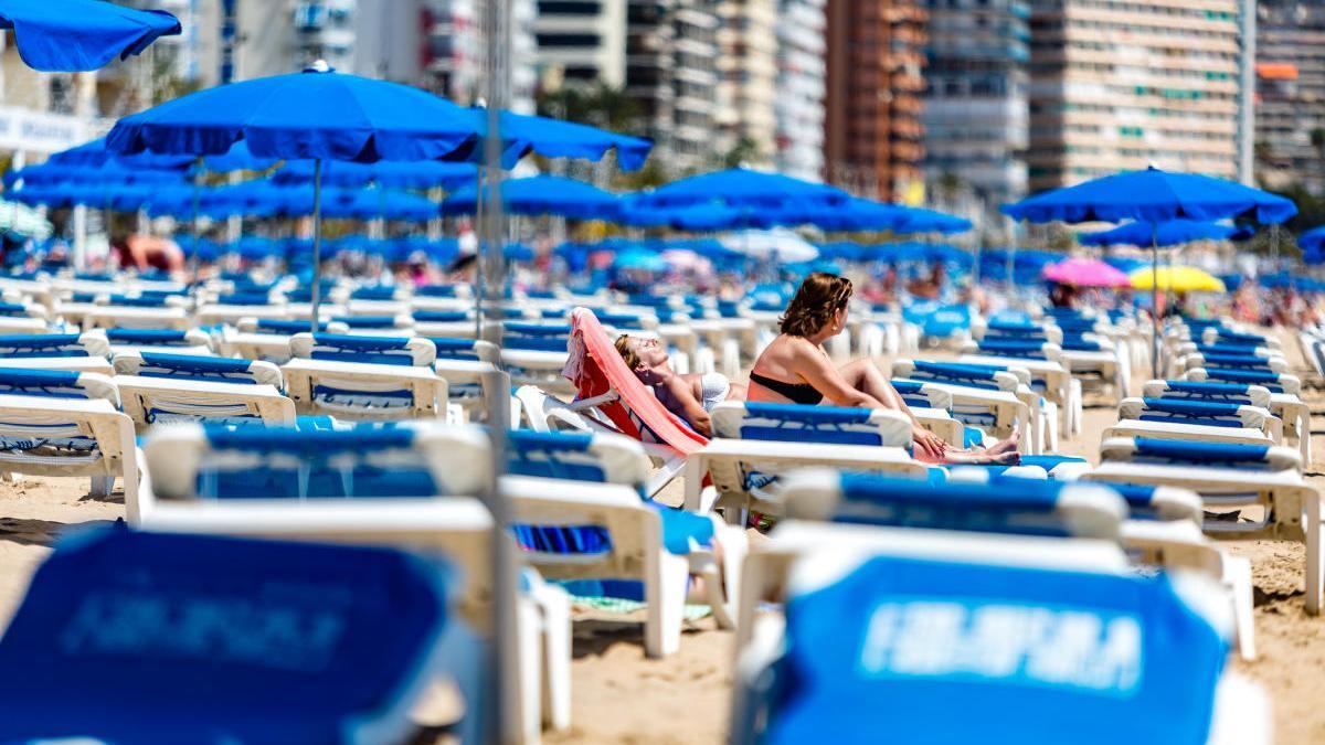 Hamacas pegada en la playa de Levante de Benidorm, una imagen imposible este verano