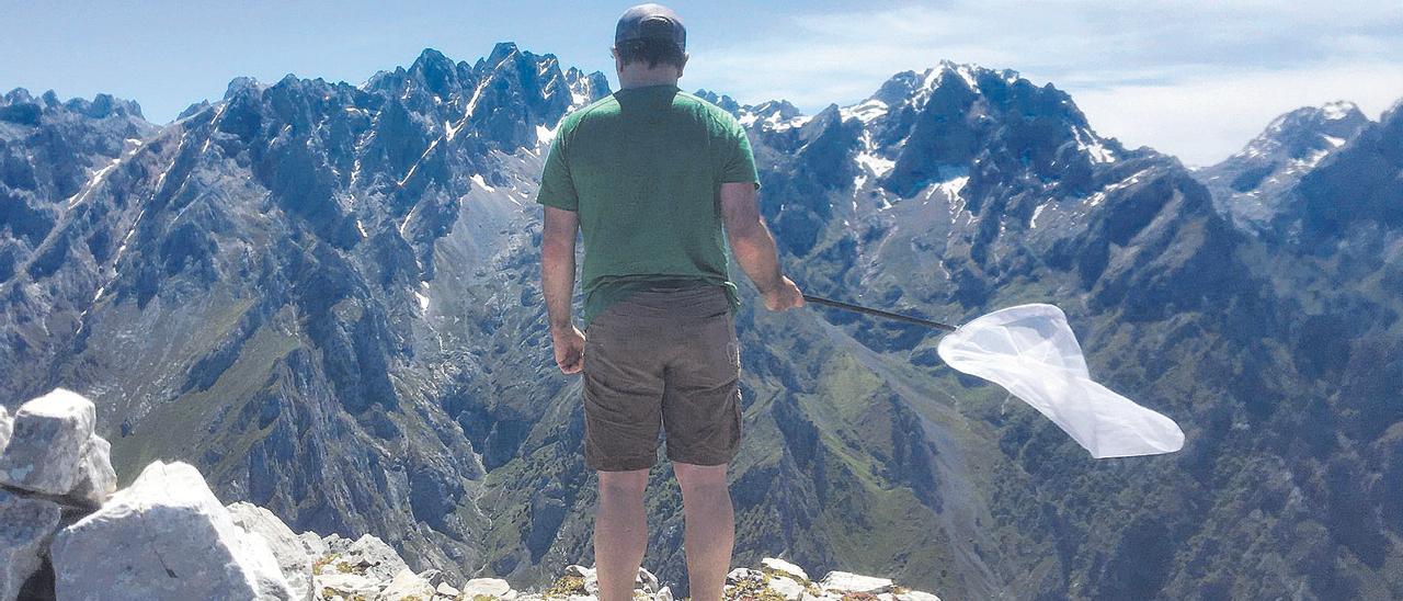 Uno de los expertos asturianos, buscando mariposas en Picos.