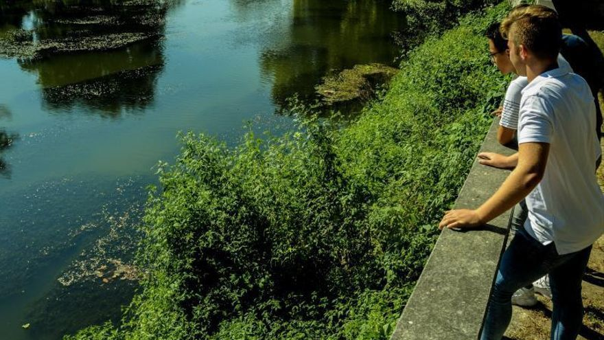 Ganadería, agricultura y erosión amenazan la calidad del agua de doce embalses