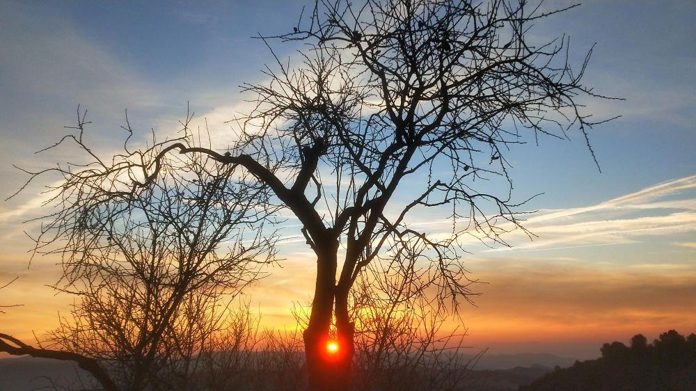 Sortida del sol amb núvols a Cardona.