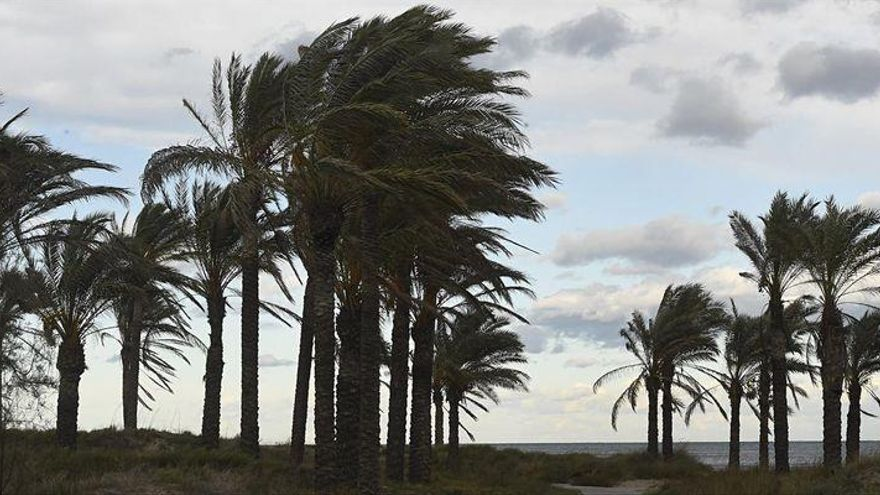 Rachas de viento de hasta 126 km/h en la provincia de Castellón