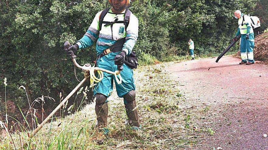 Limpieza y desbroce de caminos rurales