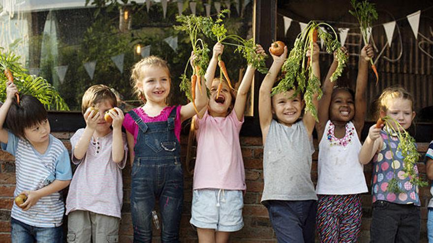 Productos de proximidad y ecológicos en el comedor escolar, la apuesta de Serunion