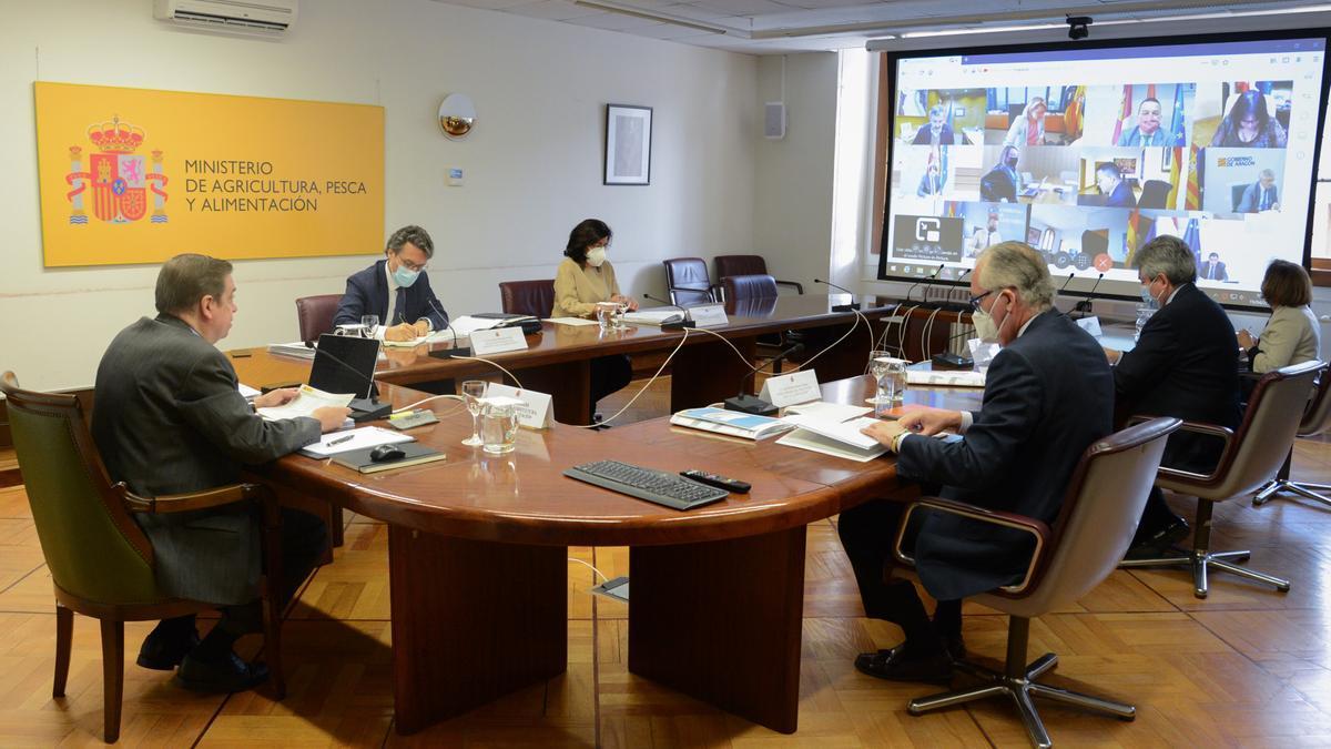 Luis Planas junto a miembros de su equipo en una videoconferencia con los consejeros de agricultura.
