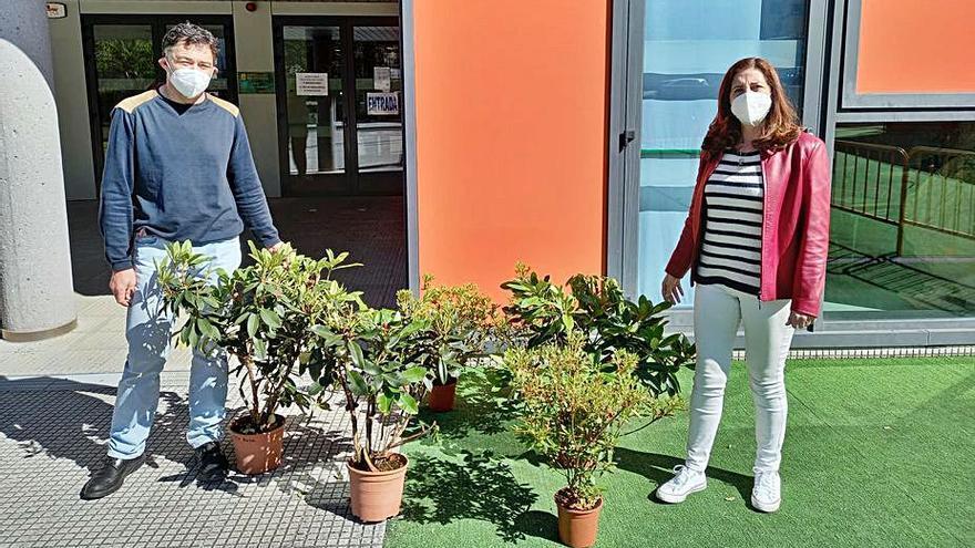 Los colegios de Lalín reciben del Concello plantas y árboles