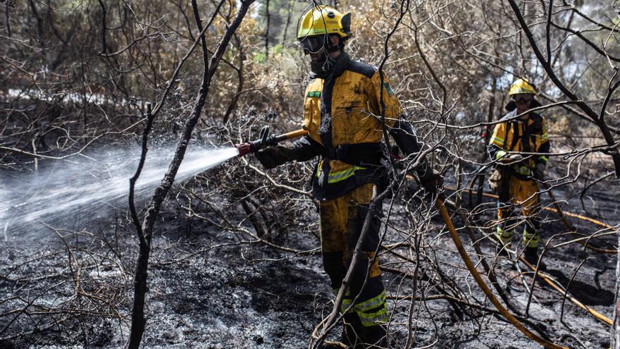 Dos incendios agrícolas queman 1.900 metros cuadrados en dos áreas de Ibiza
