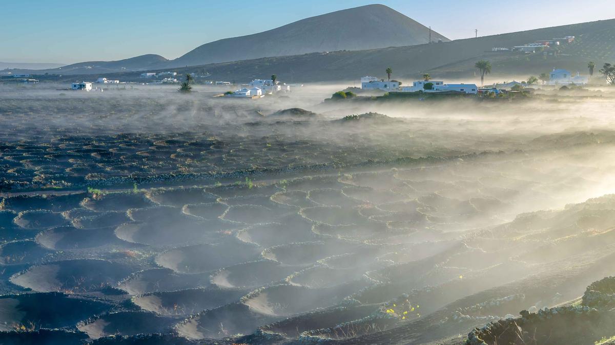 Bruma en el amanecer de Masdache, en el municipio de Tías (Lanzarote).