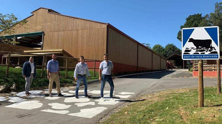 Los pasos de vaca se extienden por Galicia