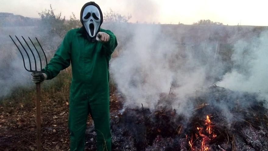 Los coles de Zamora sacan su cara más terrorífica por Halloween