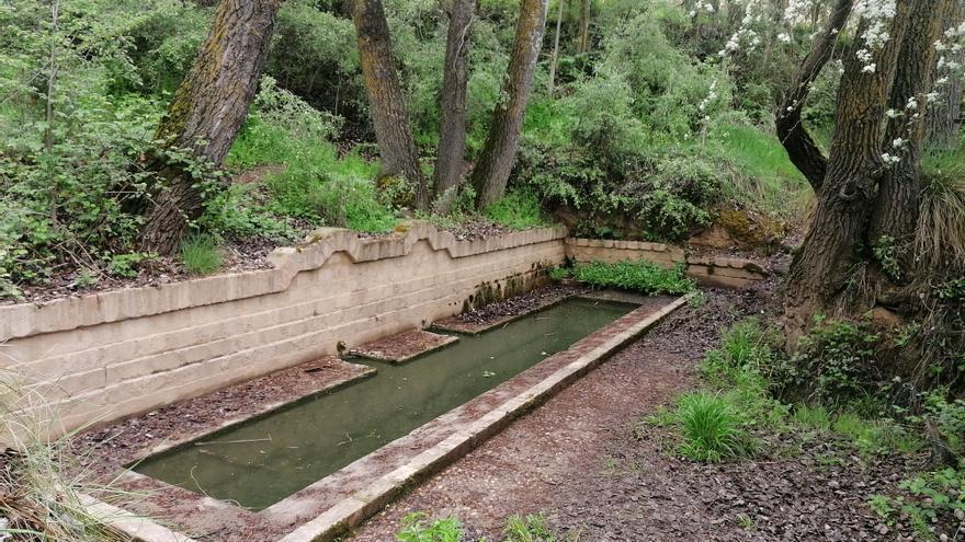 ProCulto prosigue el domingo con la limpieza del sendero del río en Toro