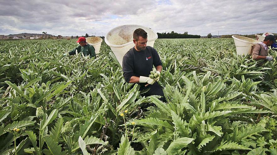 Los agricultores tradicionales exigen a la CHS atajar el regadío ilegal en el nuevo plan de cuenca