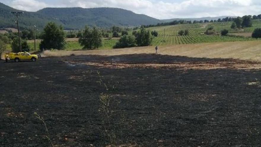 Cremen 3.000 m2 de rostoll a Santa Maria de Miralles
