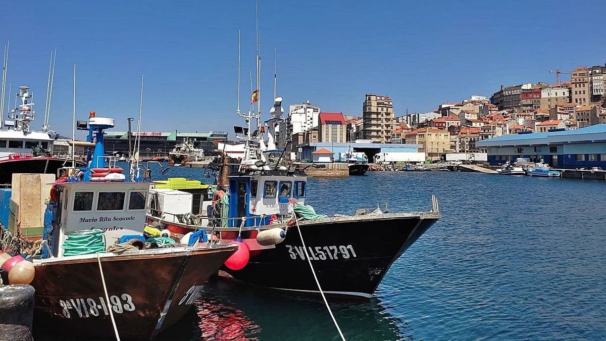 Barcos de cerco amarrados en Vigo.     // A.A.