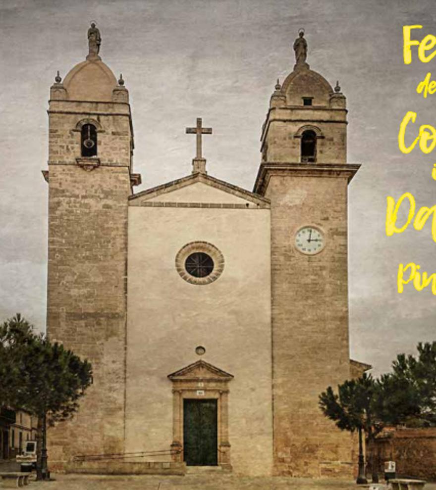Festes de Sant Cosme i Sant Damiá Pina - Ball de bot