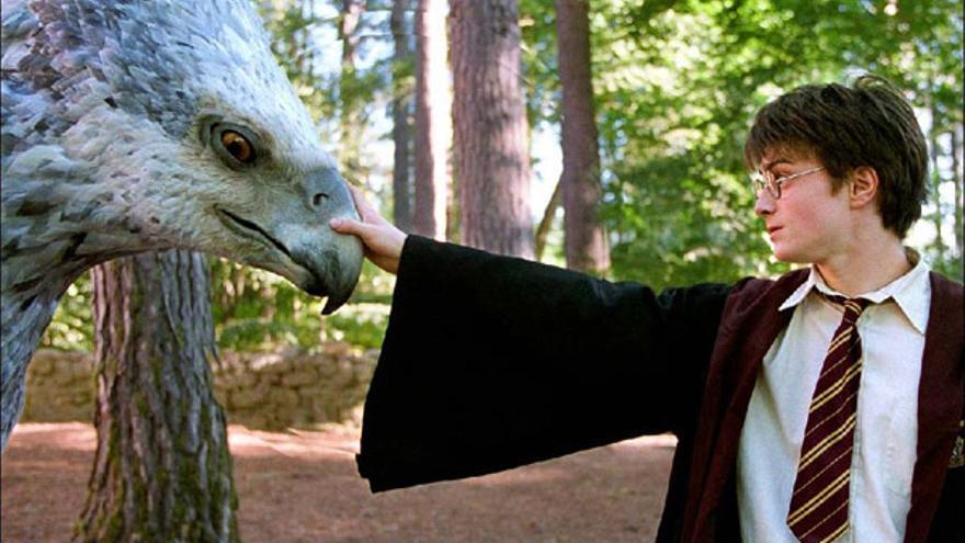 """El """"Harry Potter"""" abandonado en una estantería que puede valer 55.000 euros"""