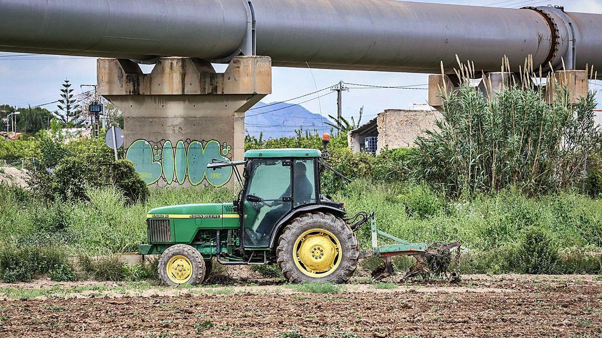 Un agricultor trabaja con su tractor junto a los tubos del Trasvase en la Vega Baja.