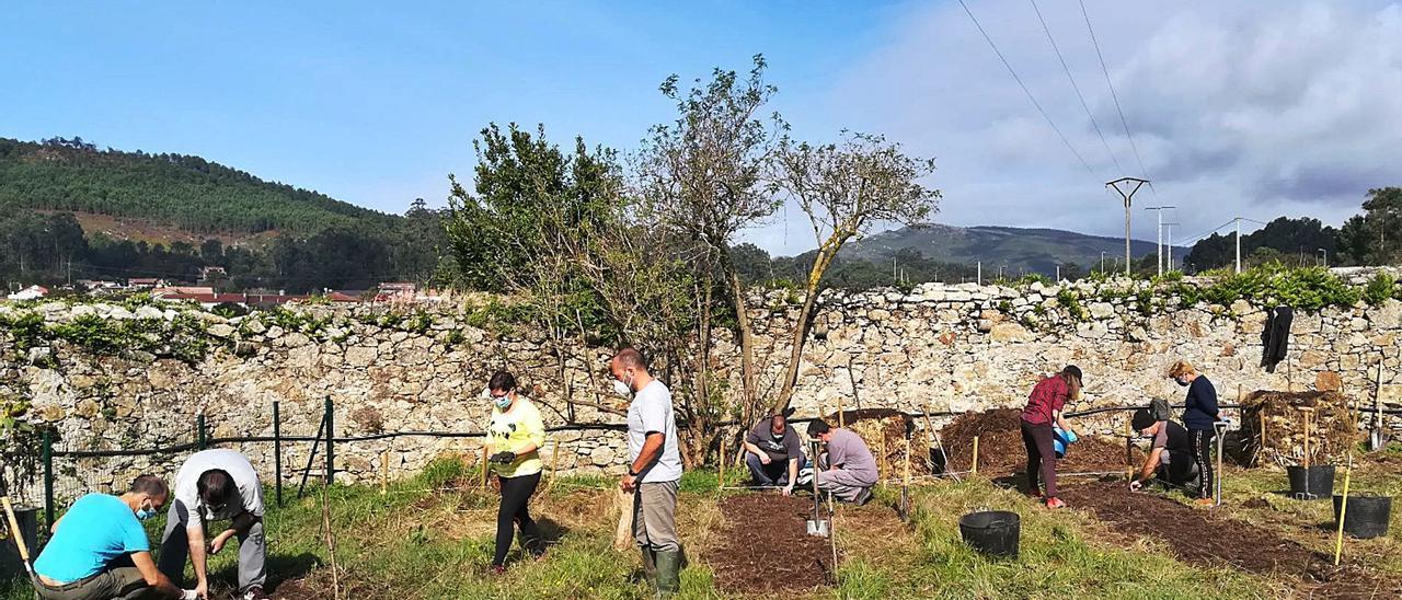 Usuarios de la Asociación San Xerome Emiliani de A Guarda, trabajando en su proyecto de huerta ecológica.