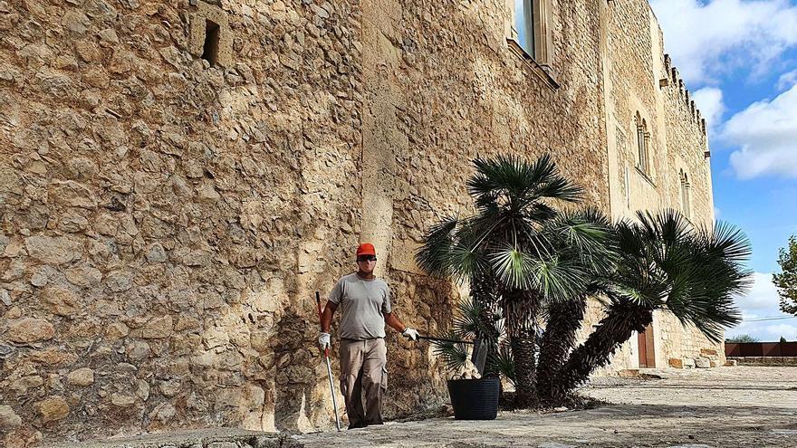 Trabajo y salud, un doble beneficio a través de la jardinería