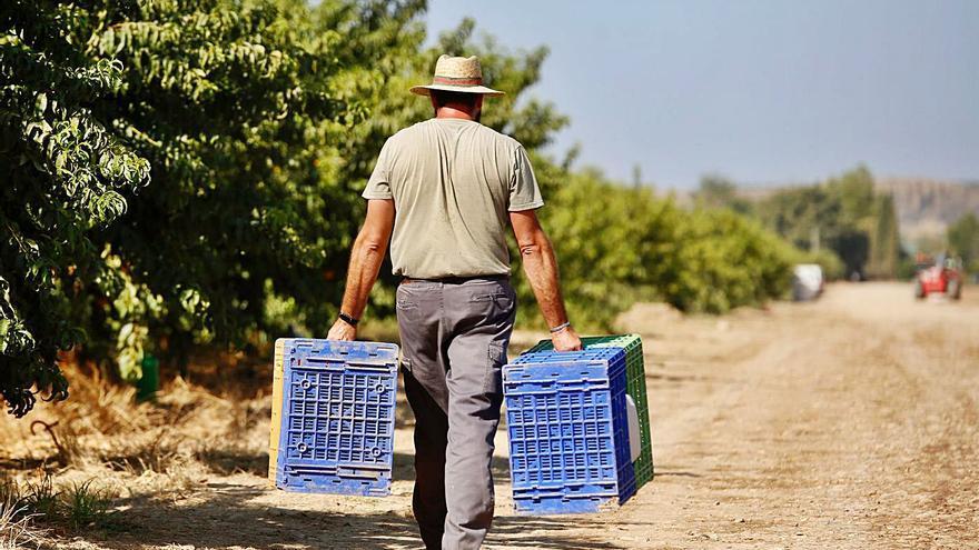 La subida del salario mínimo beneficiará en Córdoba a más de 90.000 trabajadores