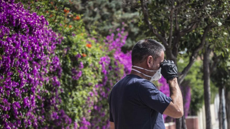 Mascarillas para prevenir el covid y las alergias por el alto nivel de polen en Alicante