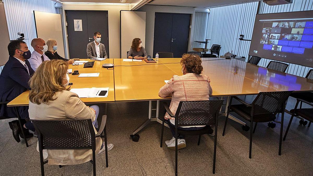 Responsables del Sergas, en la reunión por videoconferencia del Consello de Atención Primaria. |  // FDV
