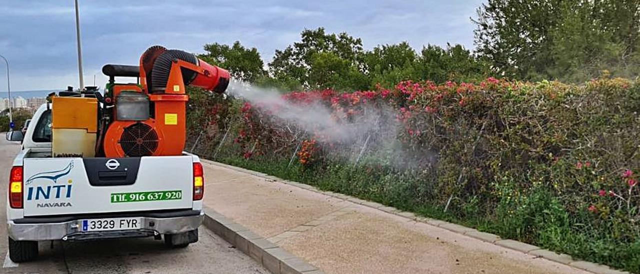 Cañones de fumigación contra los mosquitos esta semana. | INFORMACIÓN