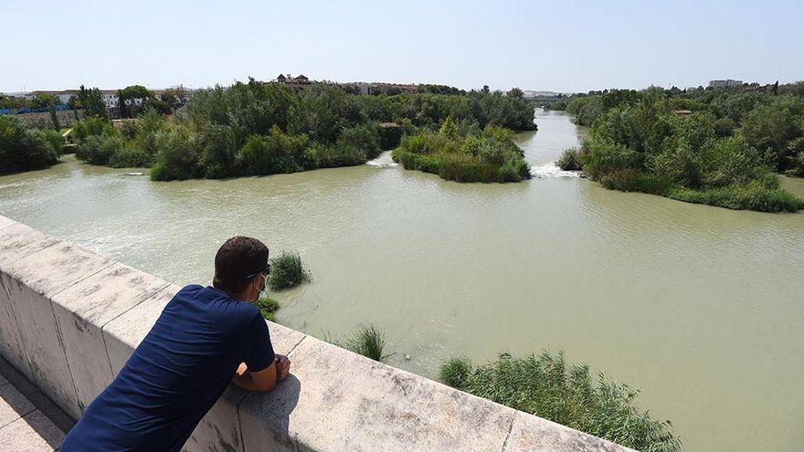 La plataforma 'Por un Río Vivo' vuelve a reclamar al Ayuntamiento de Córdoba actuaciones que dignifiquen el trazado del Guadalquivir a su paso por la ciudad