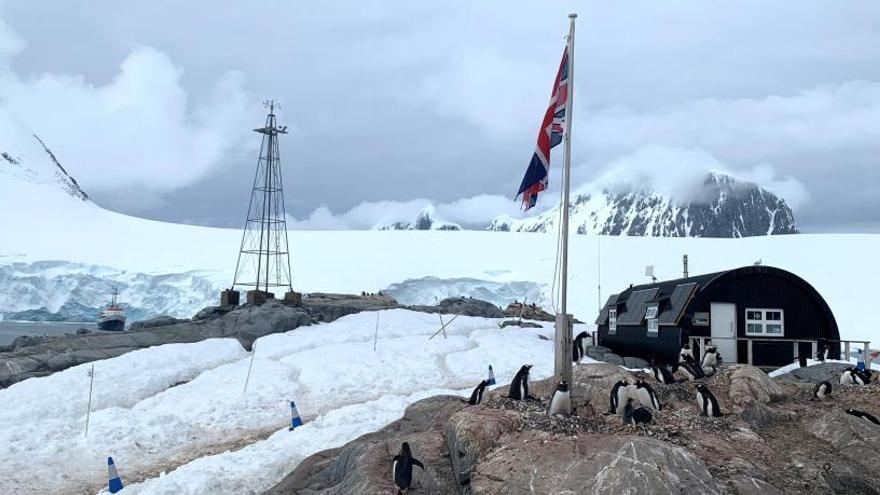 Vuitanta expertes científiques culminen amb èxit l'expedició a l'Antàrtida