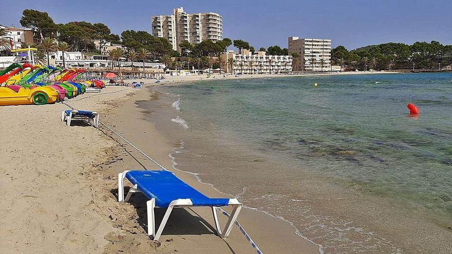 Giftige Algen am Badestrand von Peguera auf Mallorca? Das sagen die Forscher