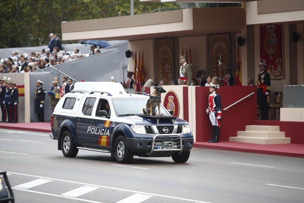 Vehículo de la Policía Nacional con un perro ...
