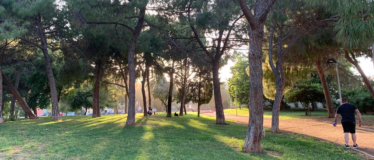 Explanada del Parque Lineal, donde los perros pueden socializar.