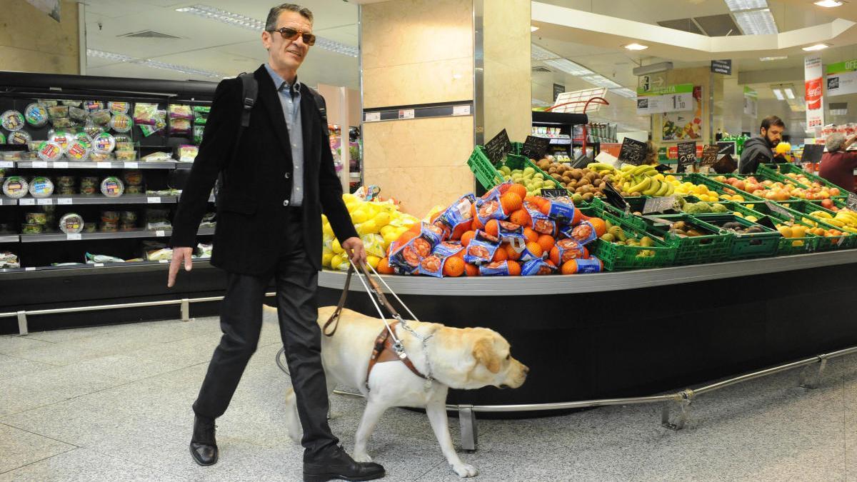 Una persona cega amb un gos guia al supermercat.