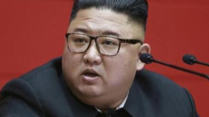 ¡Terrorífico! Kim Jong-un confisca todos los perros de Pyongyang
