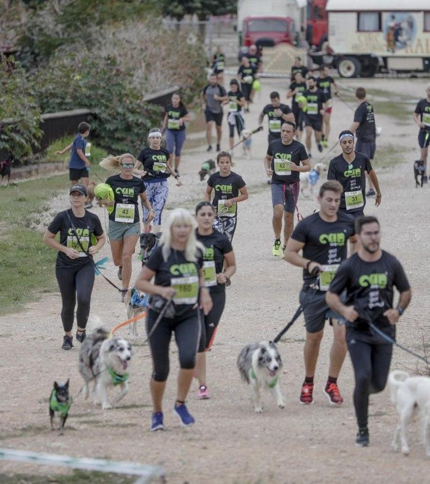 Participa en la carrera virtual de la Can We Run y gana una aspiradora para tu perro