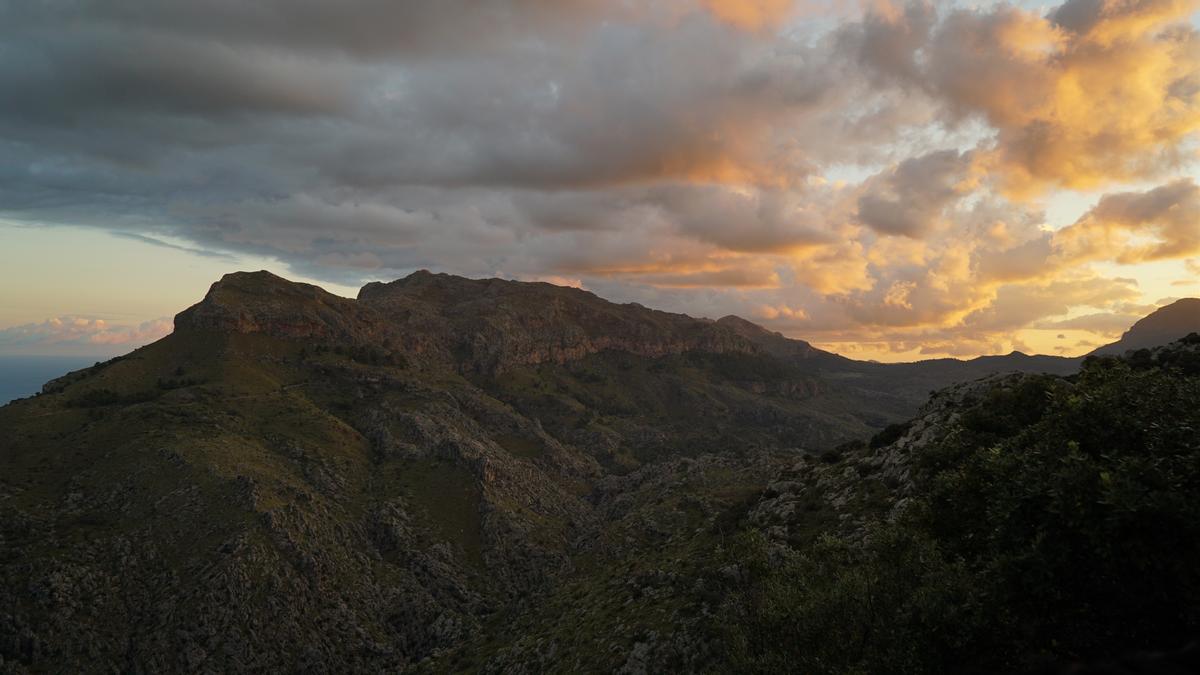 La propuesta de modificación del PORN de la Serra incrementa en 200 hectáreas las zonas de exclusión