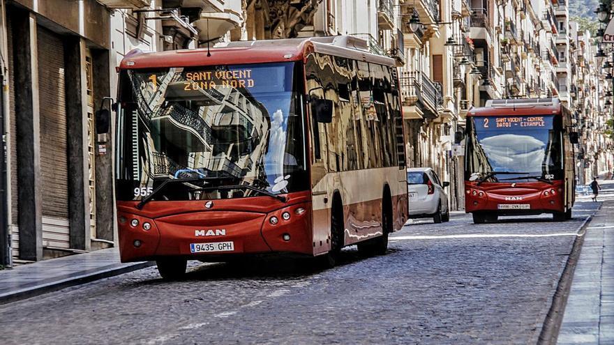 Alcoy es la única ciudad de la provincia que permite viajar con perros en el autobús