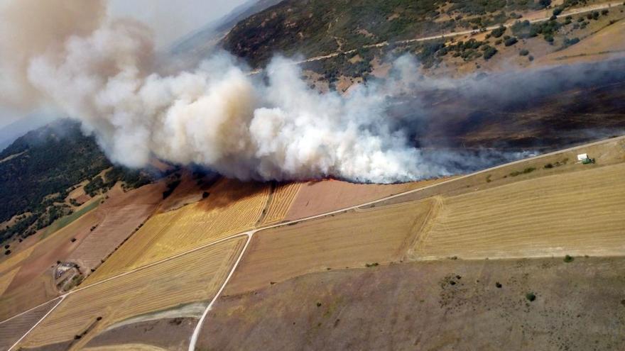 El incendio de Colina (Burgos) baja a nivel 0 tras quemar 100 hectáreas de cereal y matorral