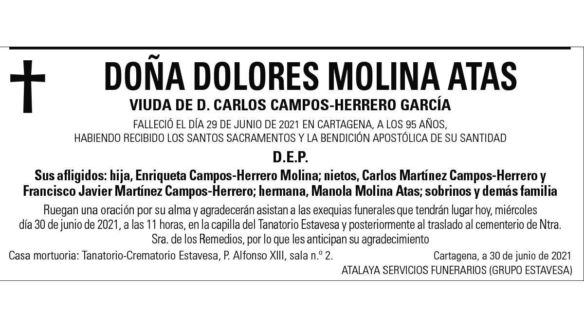 Dª Dolores Molina Atas