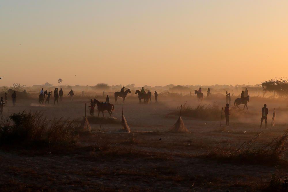 Jinetes entrenan en Senegal.