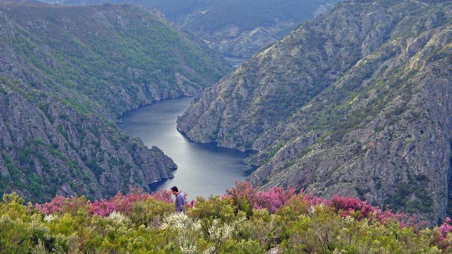 Un Camino asombroso por la apabullante geografía gallega