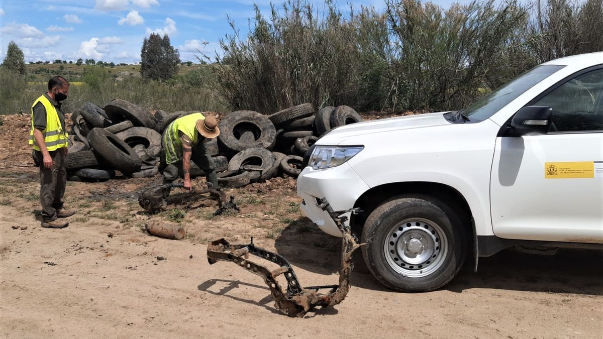 Neumáticos de camiones localizados en el río Guadiana.