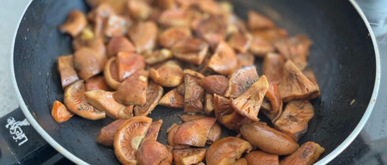 Comienza la temporada de setas: Guía para disfrutar de este nutritivo alimento sin peligro