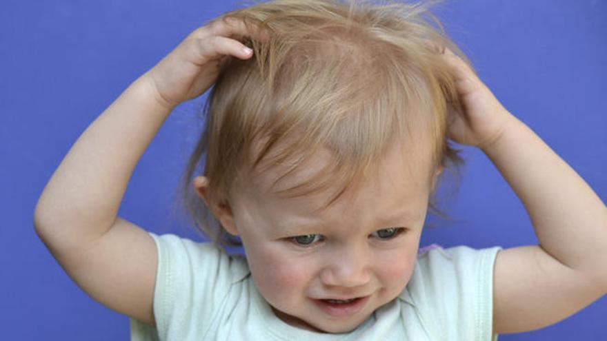Un 30% de los niños sufrirá piojos durante este curso escolar