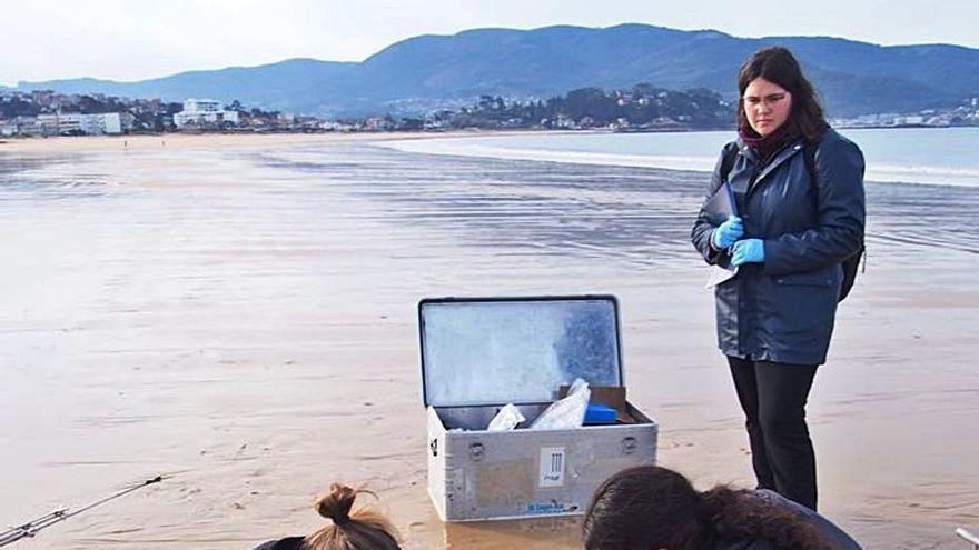 Las descargas subterráneas en las playas aportan hasta el 23% del agua dulce de la ría